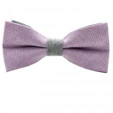 Motýlik fialovo-šedý